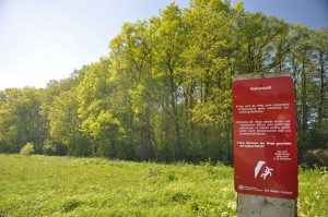 Naturschutzgebiet Huntebruch Bild: Oliver Lange