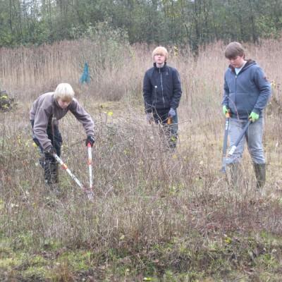 Biotoppflege. Entkusseln zur Erhaltung der offenen Flächen. Eine Aktion mit Konfirmanden, die mit Astscheren die Birken- und Weidenaufläufer abkneifen. (Peter Jacobson)