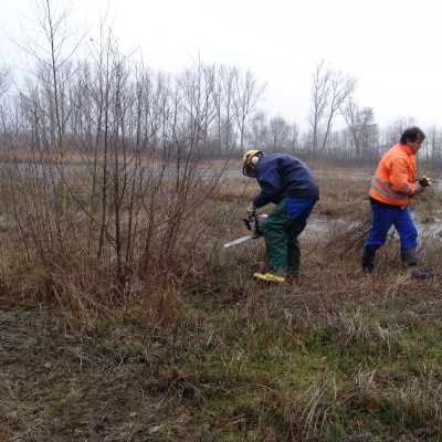 Biotoppflege (Entkusseln zur Erhaltung der offenen Flächen) (Ulf Walek)