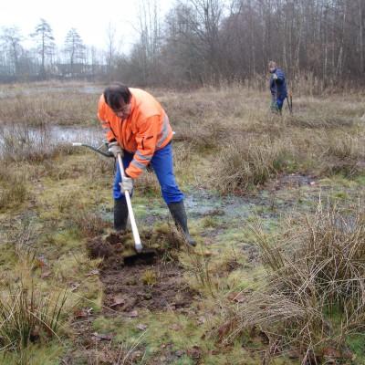 Biotoppflege (Plaggen zur Erhaltung der offenen Flächen) (Ulf Walek)