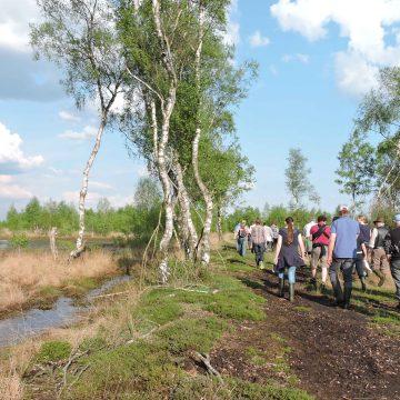Bilder von der Exkursion in das Oppenweher Moor