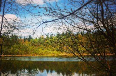 Pastorendiek – Das kleine Juwel soll noch besser geschützt werden