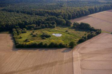 In der Stadt Syke wurde ein wertvoller Bereich als Naturschutzgebiet ausgewiesen